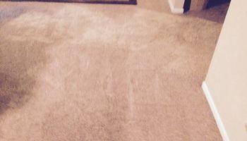 Carpet cleaner (3room living room $89)