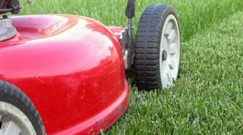 Lawn Mowing Service - RR, PF & Wells Branch