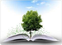 Language Arts Tutor [Reading, Writing, Grammar, Spelling, Essay]