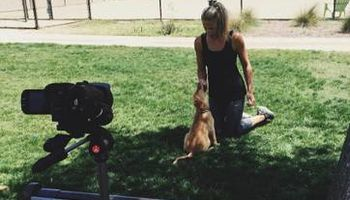 Learn PROVEN Dog Training Techniques from a Master Dog Trainer