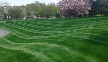 Lear's Lawn Service