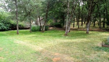 Landscape Maintanence (mowing, leaf blowing, weed eating)