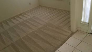 Yang Cleaning Service. Deep clean carpet
