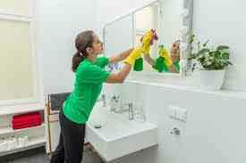 Radiantly Clean! La Crosse Area Housecleaning!