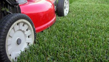 Lawn Cutting Services only $25!!