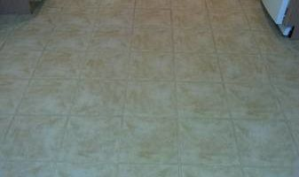 Carpet Cleaning / Upholstery by HydraTech Carpet & Disaster Services