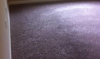 CARPET CLEANING. 2 ROOMS JUST $40!!!