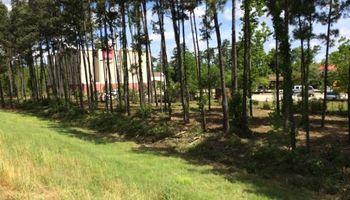 MapTractorWorks. Excavator Services/Underbrushing/Dirt Work/Bushogging
