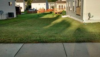 Emergency Grass Cutting