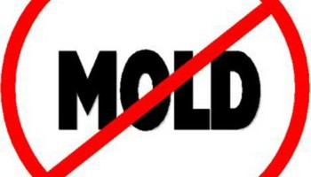 Cajun construction LLC - mold prevention