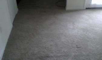 Mann Mann carpet cleaning
