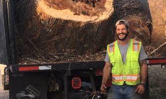 DeForest Tree Service