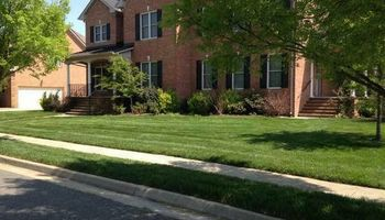 Best Priced Quality Pro Lawn Care