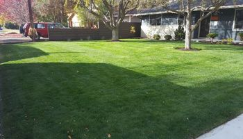 Villanueva Lawn Care Solutions