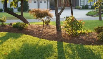 Landscaping and Lawn care.