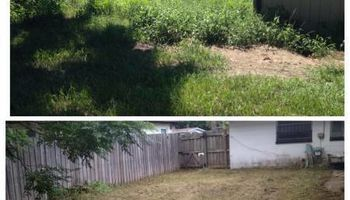 Skilled Handyman, Lawncare services & Storm clean-up