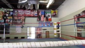 Pound 4 Pound Boxing( Pro & Am)