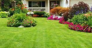 J&d lawn service