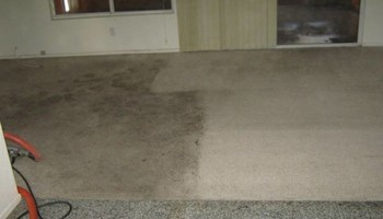 Carpet and Upholstery Cleaning. Special $99.95!