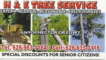 EMERGENCY TREE SERVICE 24/7 WORK GUARENTEE - Lic #1004927