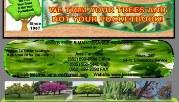 JESS CARMONA TREE SERVICE-FOR LESS-SINCE 1987