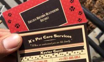 X's Pet Care Services