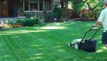 Quick Lawn Services - Clean Ups, Haul offs, Mowing