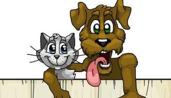 Fuzzy Muzzles Loving Pet
