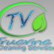 Truevine Cleaning Service