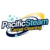 Pacific Steam