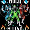 Mold Squad Restoration