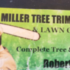 Miller Tree Trimming and Lawn Care