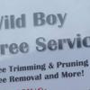 Wild boy tree service