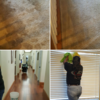 JCM Cleaning Services & Carpet Cleaning