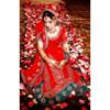 Asha's Photo Studios / Wedding Videography (Desi-Style Studio)