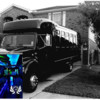 NEED A LIMO OR A PARTY BUS?