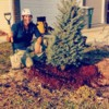 West Coast Tree Surgery | Certified Arborist | Reasonable Rates