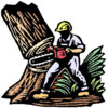 Tree Removal & Pruning Services (Lisenced&Insured)
