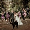 Todd Allman. Special 40% off Wedding photography