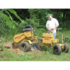 Stump grinding at a reasonable price!