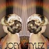 JoeyStyles. Best Make Up & Hair Team 4weddings
