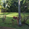 Aloha Lawn Care LLC - Weed Whacking, Edging, Blowing