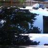 Pinellas & Pasco County #1 Mobile Window Tint