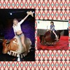 Mechanical bull/toro mecanico