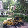 Grinding Special! Stump removal