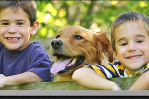 Photo #2: Austin Veterinary Center