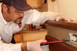 Photo #2: Truly Nolen Pest & Termite Control