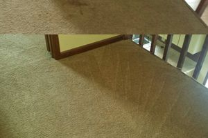 Photo #1: VeriClean Carpet cleaning
