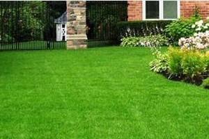 Photo #4: C & R Lawn Care Service