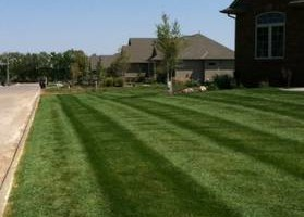 Photo #5: Johnson lawn and landscape